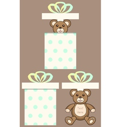 Bear in present box vector
