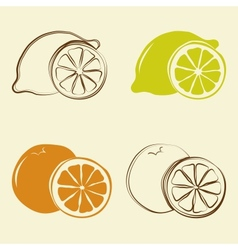 lemon and orange icons - vector image