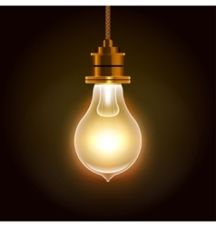 Modern Bulbs Background vector image