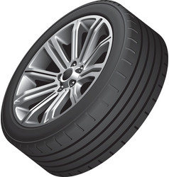 Alloy wheel with low profile tire vector