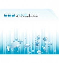 bubbles flyer vector image