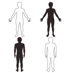 man body vector image