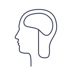 silhouette side head with brain vector image