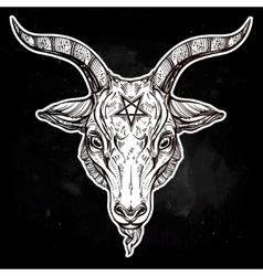 Pentagram with demon baphomet satanic goat head vector