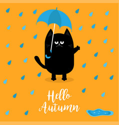 hello autumn black cat holding blue umbrella rain vector image vector image