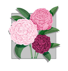 watercolor lettering bouquet of peony flowers vector image