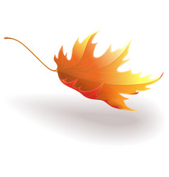 Flying leaf vector