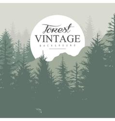 Vintage Pine Forest vector image