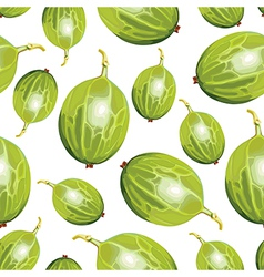 Gooseberry pattern vector