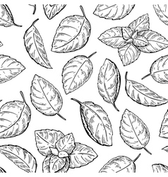 Mint drawing seamless pattern Isolated vector image vector image