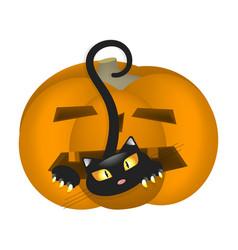 Pumpkin scares cat vector