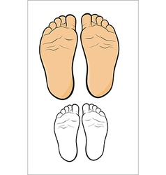 Childs foot vector
