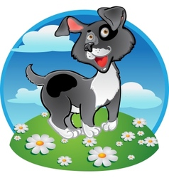 Fun black dog on color background vector image vector image