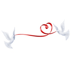 Pigeons with a ribbon in the form of heart vector image