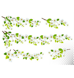 Set of nature backgrounds with spring blossom of vector