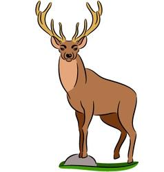 Deer vector image vector image