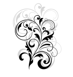 Scrolling calligraphic floral design vector