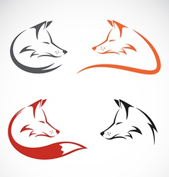 Image of an fox design vector