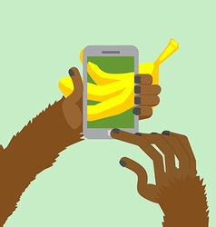 Monkey banana shoots posting to internet a photo vector