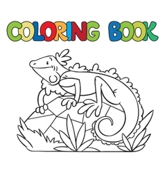 Coloring book of little iguana vector image
