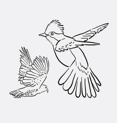 Bird animal flying drawing style vector