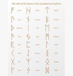 brown runes symbols on a vector image