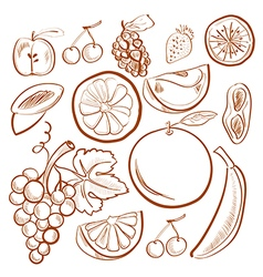 doodle set with fruits vector image