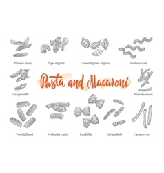 Italian Cuisine Elements Set vector image