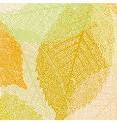 light autumn leaves pattern vector image vector image