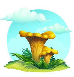 mushroom chanterelle on the grass under the sky vector image