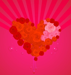 Rose heart valentines vector