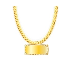 Gold chain jewelry whith gold pendants vector