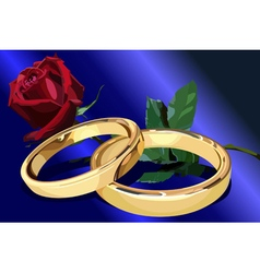 Two gold wedding rings with a red rose on the blue vector