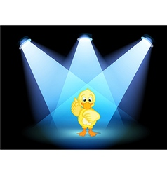 A duck with spotlights vector