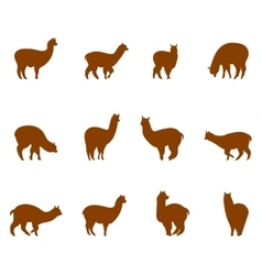 Alpaca and llams emblems collection vector
