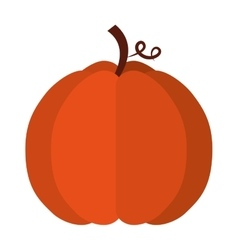 Pumpkin fruit isolated icon vector