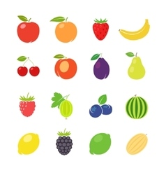Fruits retro vector