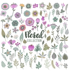 graphic set with beautiful flowers leaves vector image