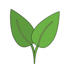 Green leaf ecology symbol vector