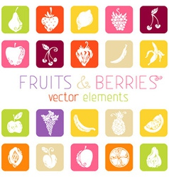 Set of flat square icons with fruits and berries vector image