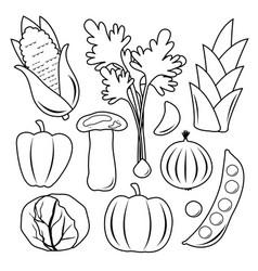 vegetable black icon set vector image vector image