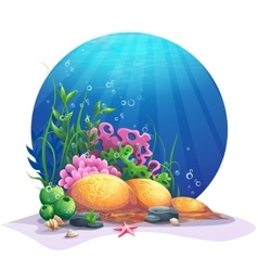 Undersea flora on the sandy bottom of the ocean vector