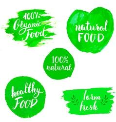 Set of Eco healthy Food labels vector image