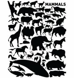 Mammals vector