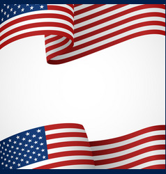 usa insignia vector image vector image
