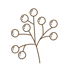 brown silhouette of stem with seeds vector image