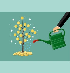 Hand watering money coin tree with can vector
