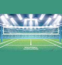 volleyball court with spotlights vector image vector image