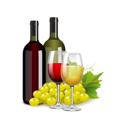 Wine bottles glasses and grapes isolated on white vector image