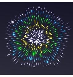 Celebrating festive colorful realistic firework vector